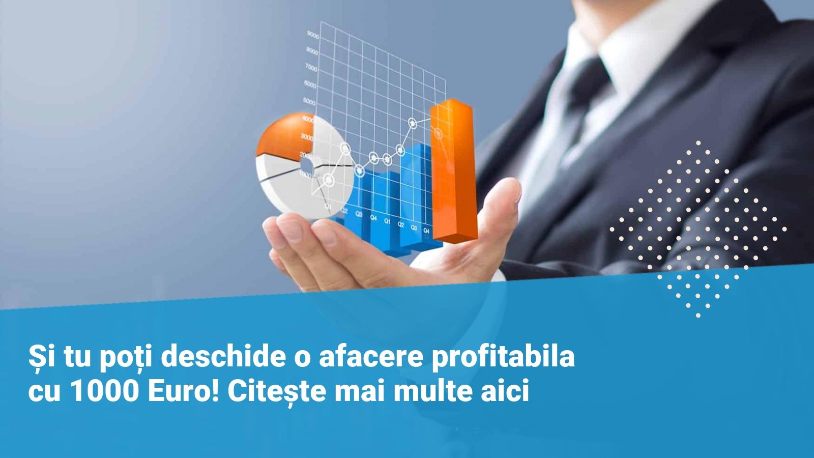 afacere profitabila cu 1000 euro