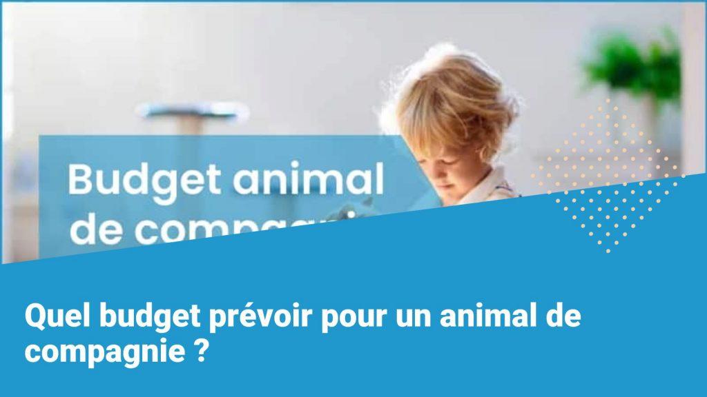 budget animal de compagnie