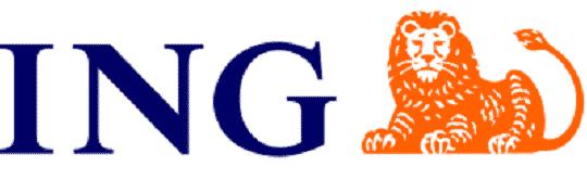 ing bank slaski logo
